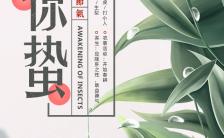 古朴简约新中式二十四节气惊蛰介绍企业推广宣传H5模板缩略图