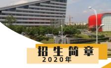 扁平简约大学招生宣传推广H5模板缩略图