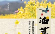 油菜花赏花活动踏青邀请函H5模板缩略图