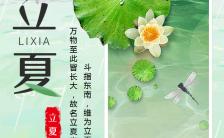 中国风二十四节气之立夏风俗介绍产品宣传H5模板缩略图