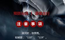 蓝色扁平简约台风预警H5模板缩略图