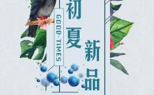 小清新初夏新品发布会宣传手机海报缩略图