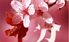 粉色唯美二十四节气之春分日签宣传海报缩略图