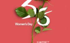 简约文艺三八女神节妇女节女人节早安问候祝福海报缩略图