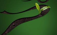 创意简约312植树节保护环境宣传手机海报缩略图