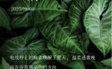 欧美小清新企业微商个人盛夏心情日签宣传手机海报缩略图