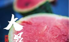 大暑夏季清爽西瓜之二十四传统节气宣传介绍手机海报缩略图