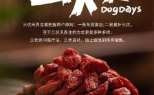 中国风医疗行业三伏天养生知识宣传介绍海报缩略图