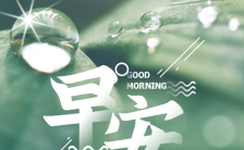 唯美绿色实景风早晚安心情日签手机海报缩略图