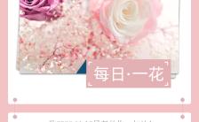 粉色小清新风格心情日签每日一花手机海报缩略图