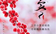 小清新简约文艺立冬节气日签手机海报缩略图