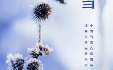 蓝色二十四节气之小雪日签问候手机海报缩略图