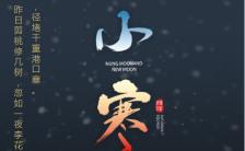 中国风大气二十四节气小寒宣传海报缩略图
