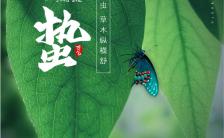 绿色简约风格惊蛰节气企业宣传手机海报缩略图