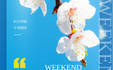 蓝色小清新风格周末你好心情日签宣传海报缩略图
