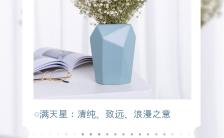 白色小清新风格鲜花寓意花语海报缩略图