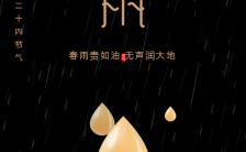 黑色简约二十四节气谷雨春雨贵如油宣传海报缩略图