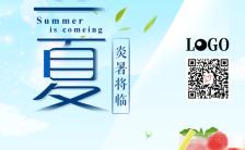 立夏节气企业宣传企业招商产品宣传手机海报缩略图