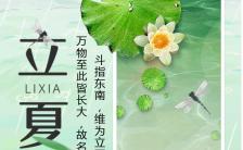 中国风二十四节气之立夏产品宣传手机海报缩略图