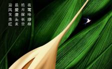 绿色清新小满节日宣传手机海报缩略图