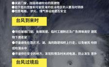 台风降雨暴雨应对措施科普手机海报缩略图