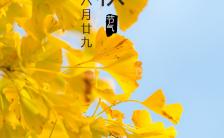 立秋节气祝福秋天实景手机海报缩略图