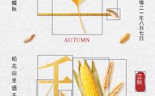 立秋节气祝福问候创意设计手机海报缩略图