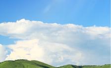 企业夏天自然清新早安励志日签海报缩略图