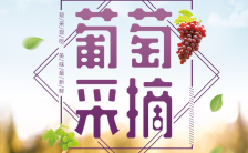 葡萄采摘水果店促销农家乐宣传小清新模板缩略图