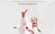 高端大气少儿跆拳道武术培训招生新馆开业活动推广缩略图