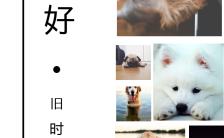 清新简约黑白的风格放入自己喜欢的照片纪念册相册缩略图
