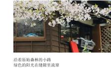 简约时尚留白黑白风日系旅行相册邀请函缩略图