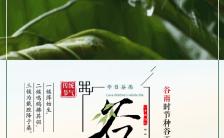 简约清新二十四节气之谷雨企业宣传H5模板