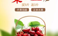 车厘子大樱桃山东樱桃水果店促销打折果园直发小清新H5模板缩略图