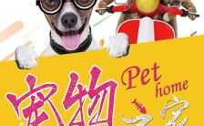 宠物之家宣传活动H5通用模板缩略图