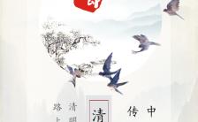 清明节诗意缅怀中国传统节日介绍宣传H5模板缩略图