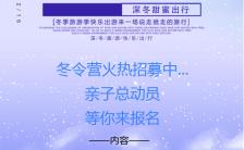 冬令营寒假班招生手机海报缩略图