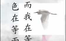 古典中国风情人节贺卡手机海报缩略图