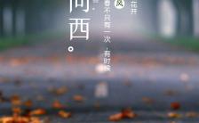 简约文艺路上风景手机海报缩略图