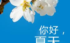 清爽夏日蓝色个人心情海报缩略图